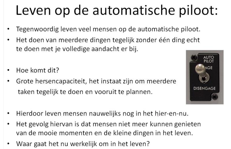 Leven\ op\ de\ automatische\ piloot.jpg